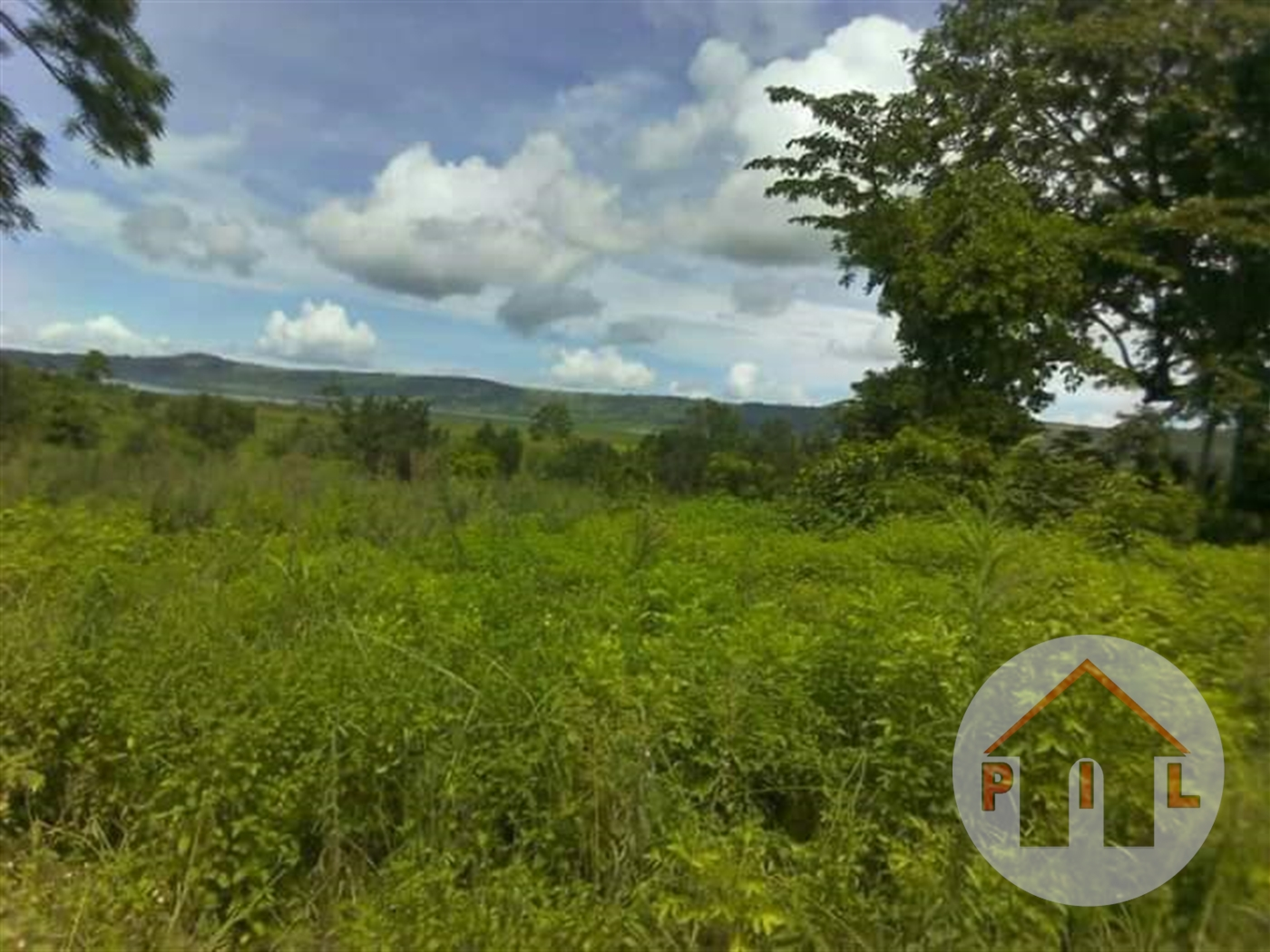 Agricultural Land for sale in Kashaka Mbarara