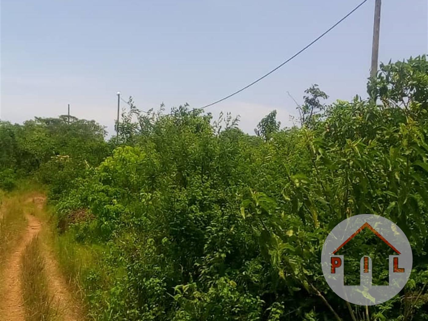 Multi Purpose Land for sale in Nyakisharara Mbarara