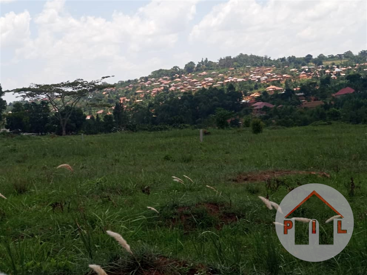 Agricultural Land for sale in Kinyogoga Nakaseke