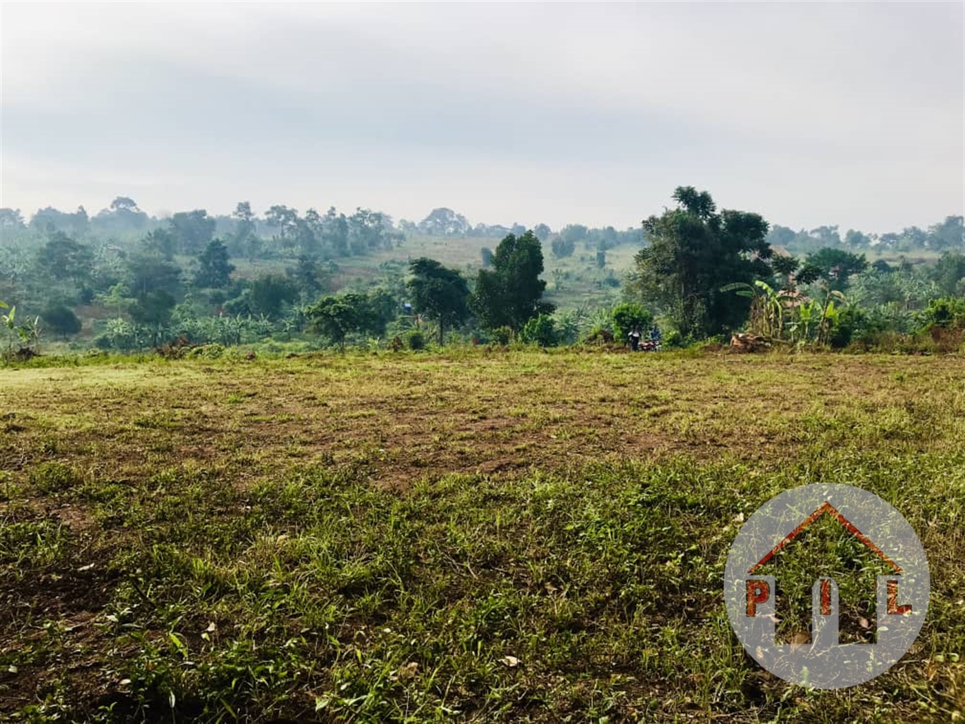 Agricultural Land for sale in Nyankumba Mbarara