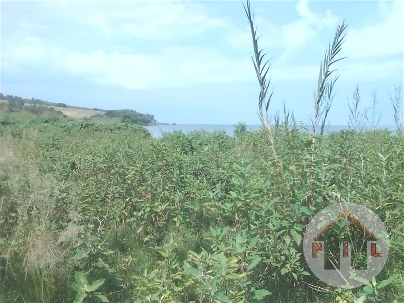 Agricultural Land for sale in Buyikwe Bukwa