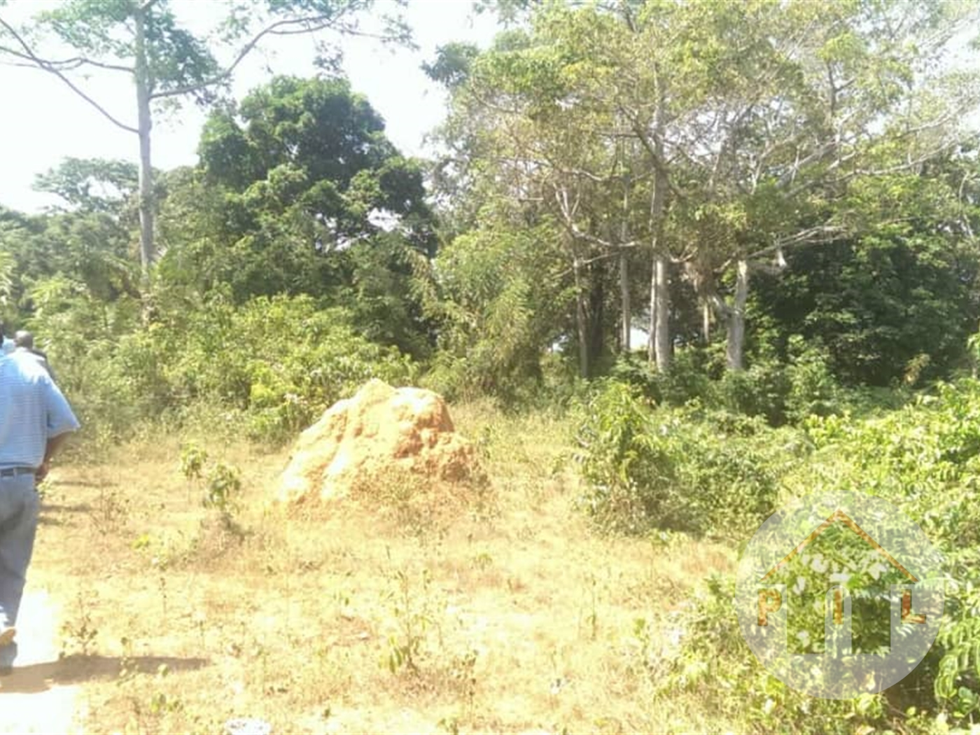Agricultural Land for sale in Kapeeka Nakaseke