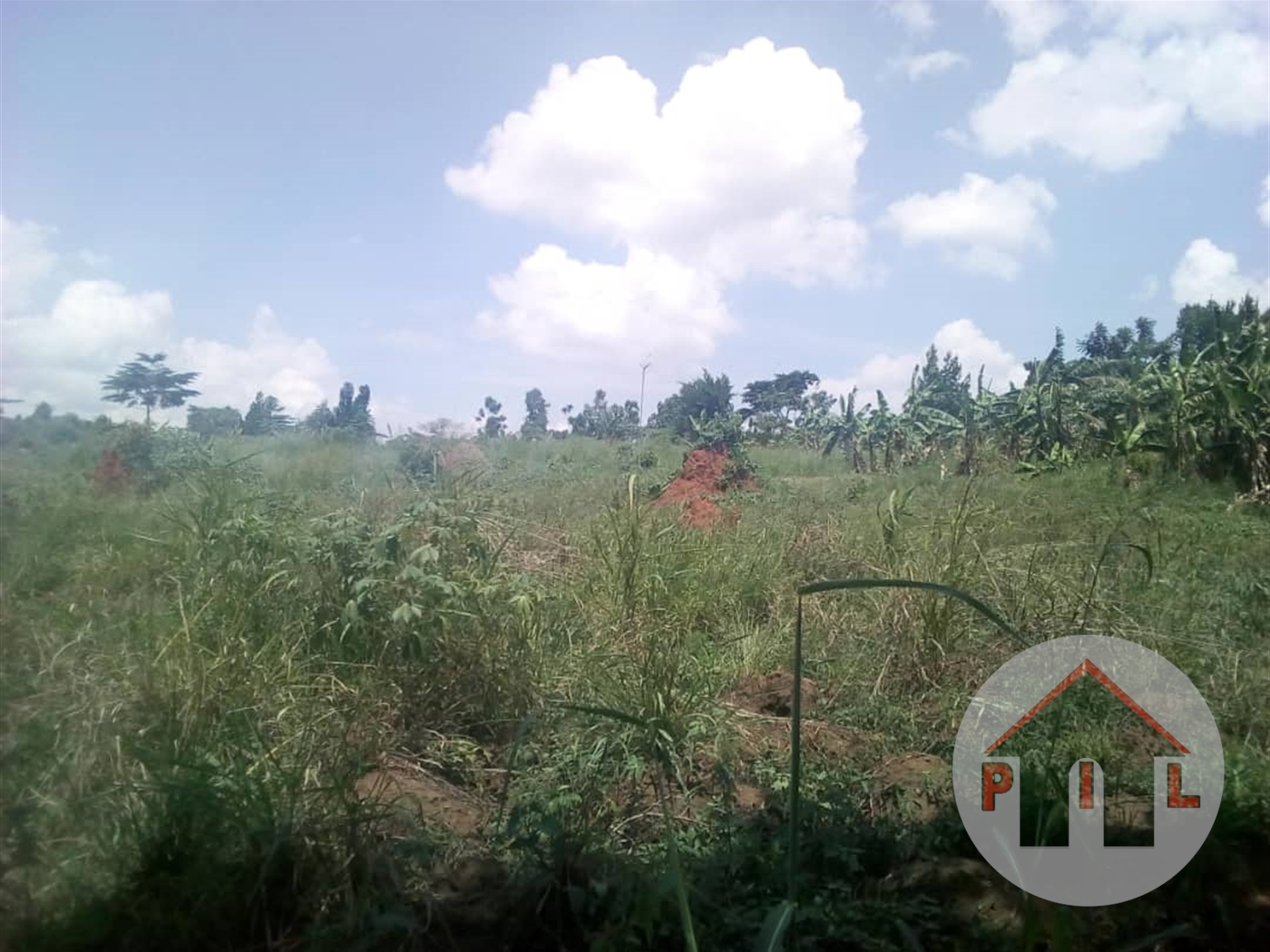 Residential Land for sale in Kikonge Mityana
