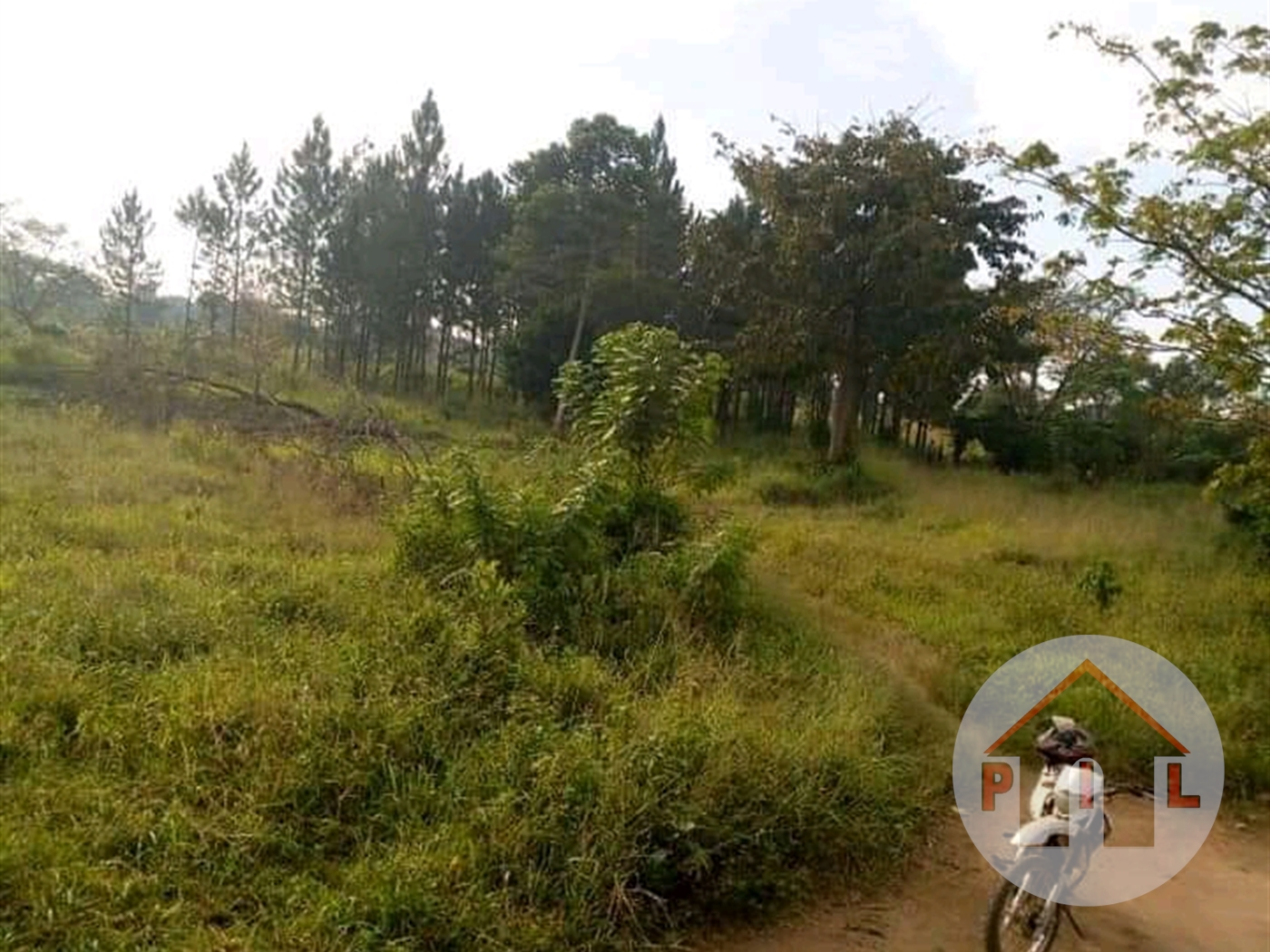 Agricultural Land for sale in Busunjju Mityana