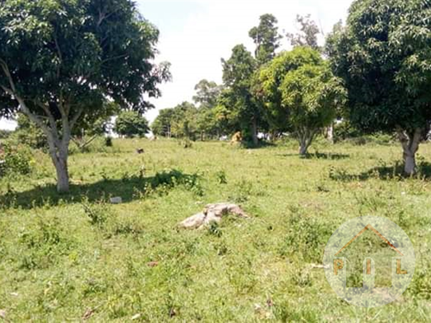 Agricultural Land for sale in Galilaya Kayunga