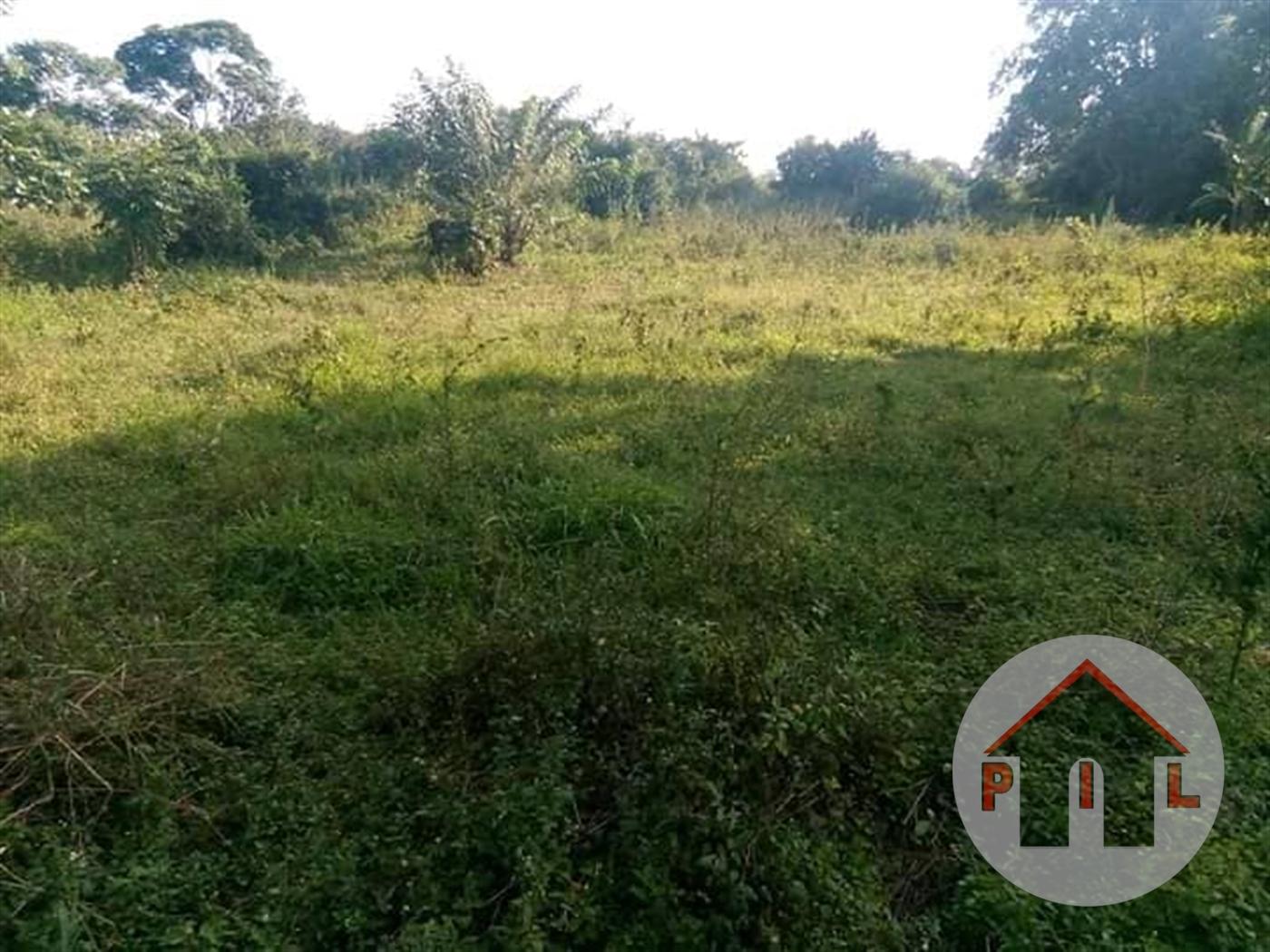 Agricultural Land for sale in Kikoota Kayunga