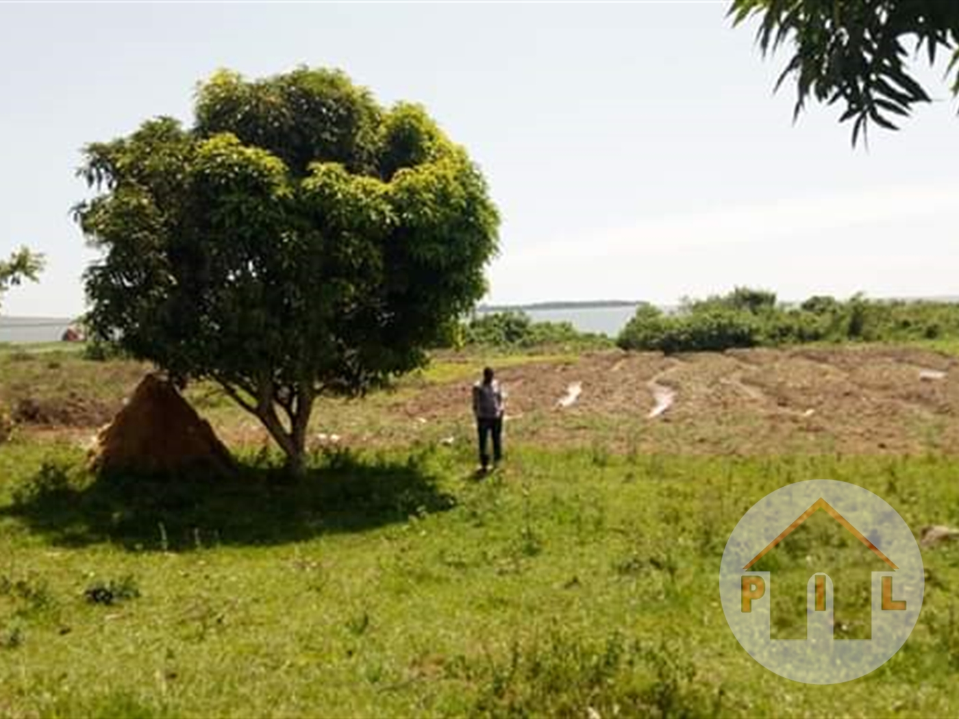 Agricultural Land for sale in Buyikwe Kayunga