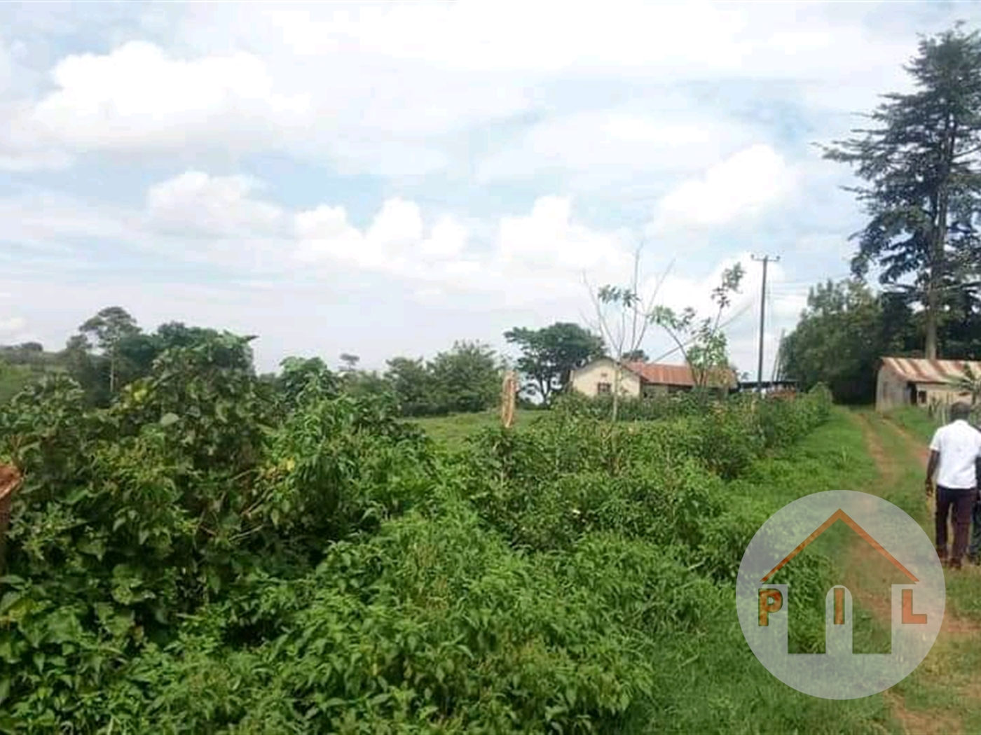 Agricultural Land for sale in Nagogye Kayunga