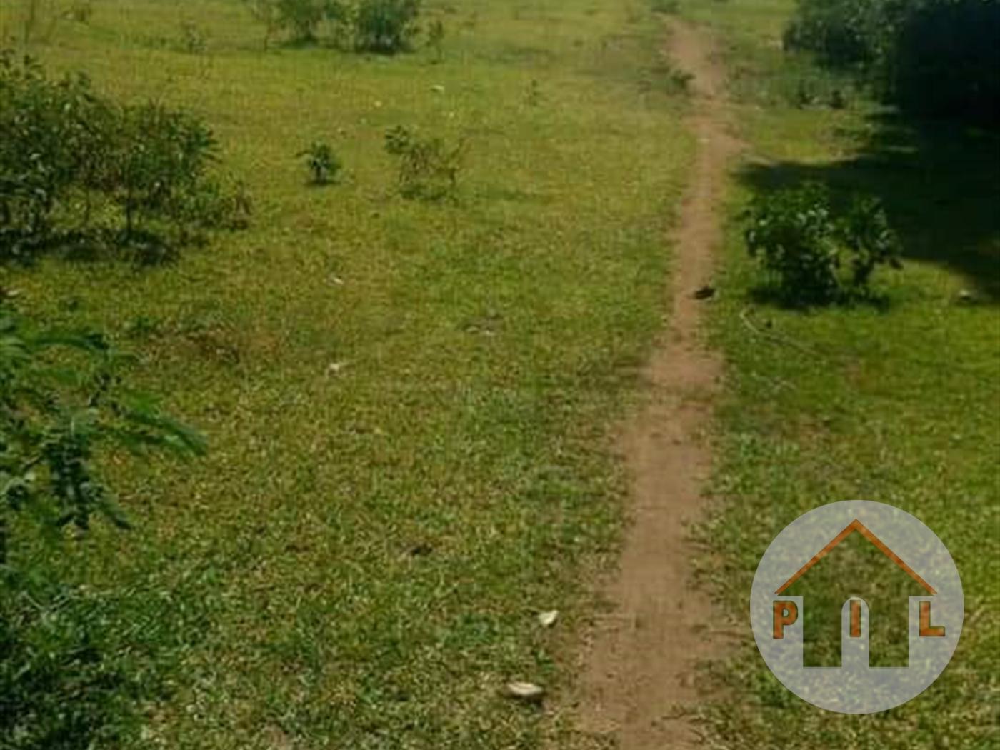 Agricultural Land for sale in Kayunga Kayunga