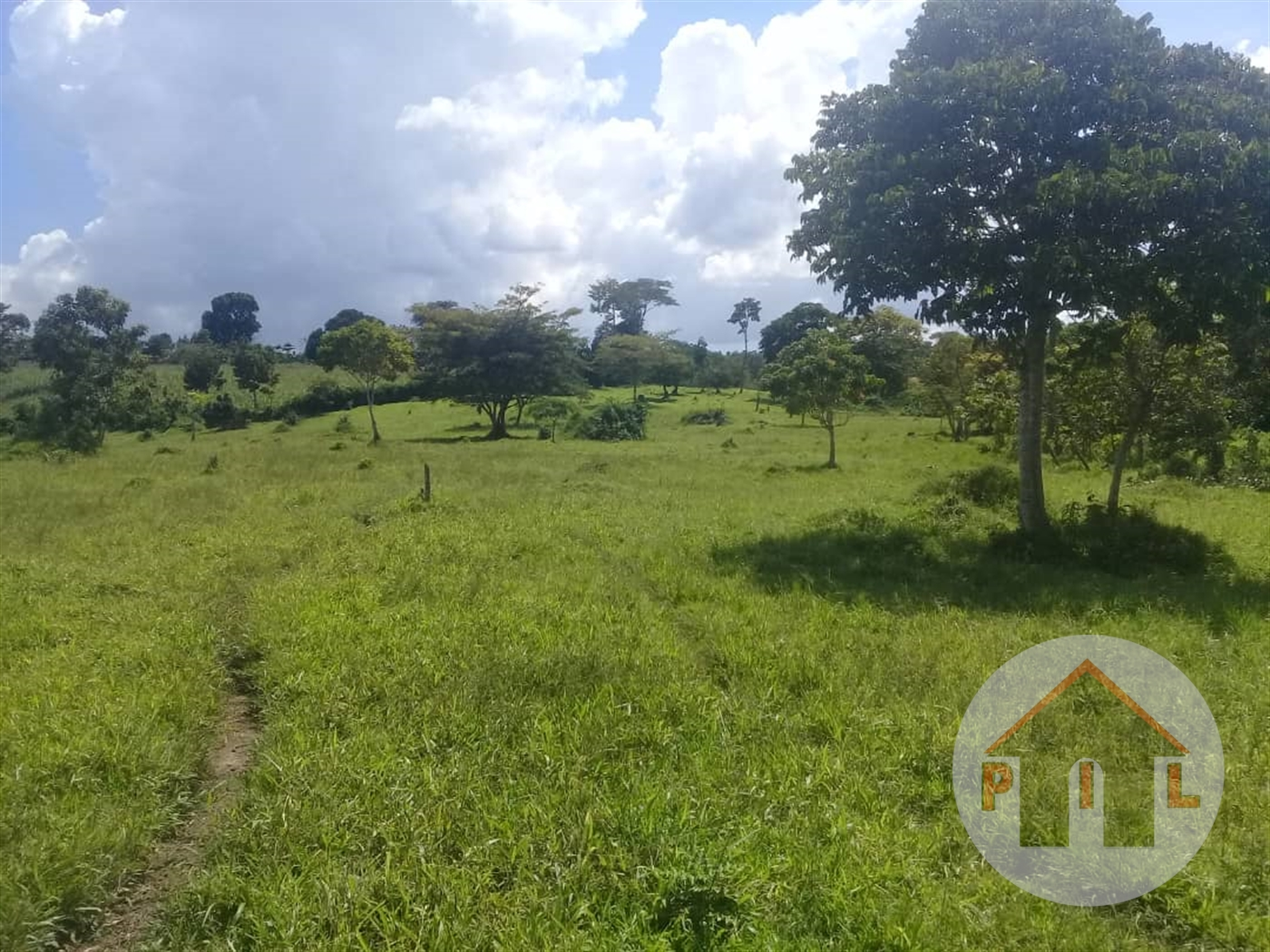 Agricultural Land for sale in Najjemba Mukono