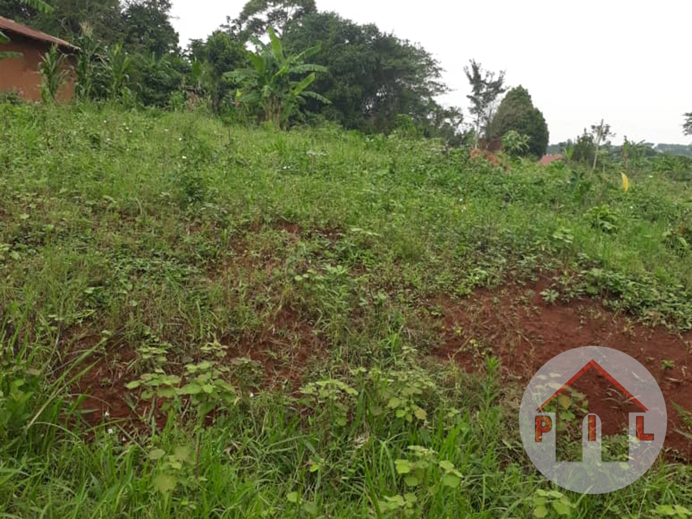 Agricultural Land for sale in Kayonza Mukono