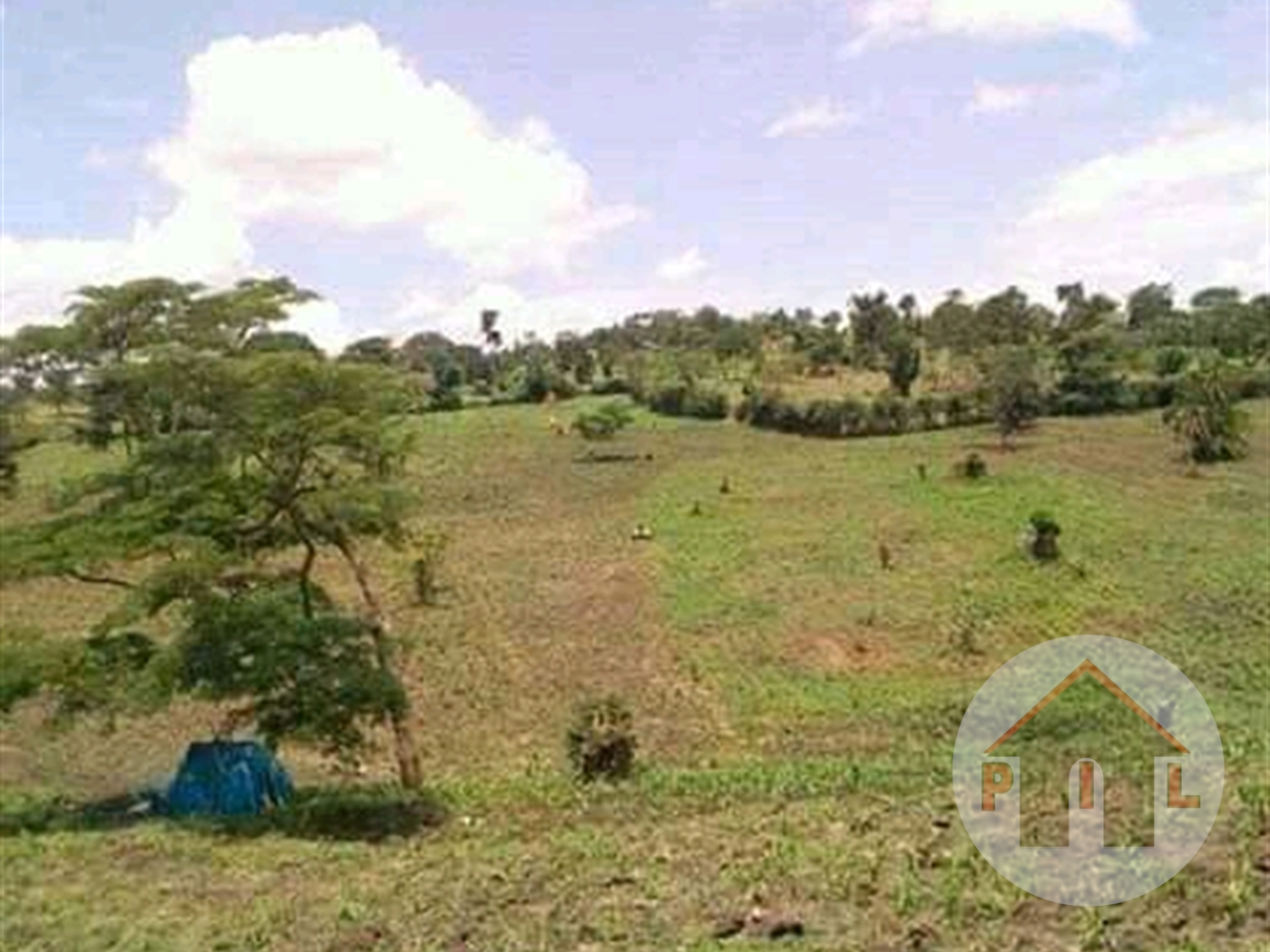 Agricultural Land for sale in Kakiri Wakiso