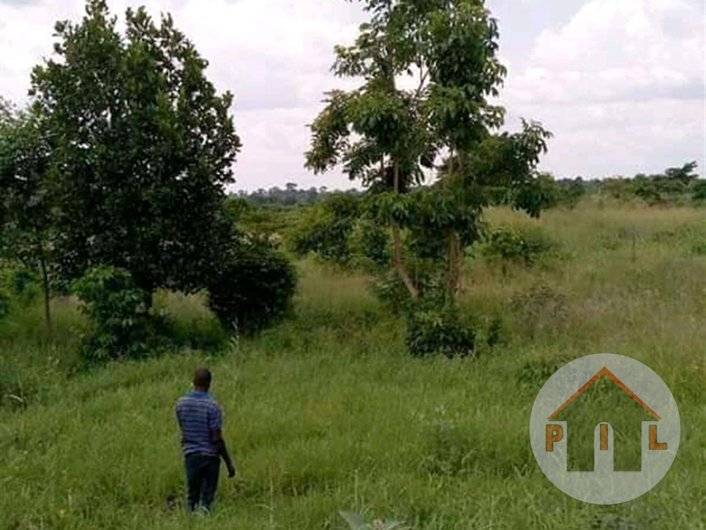 Residential Land for sale in Busunjju Wakiso