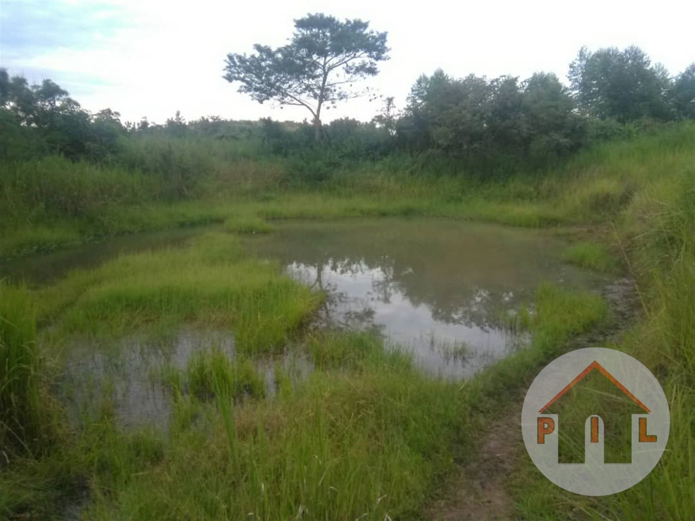 Agricultural Land for sale in Luwero Luwero