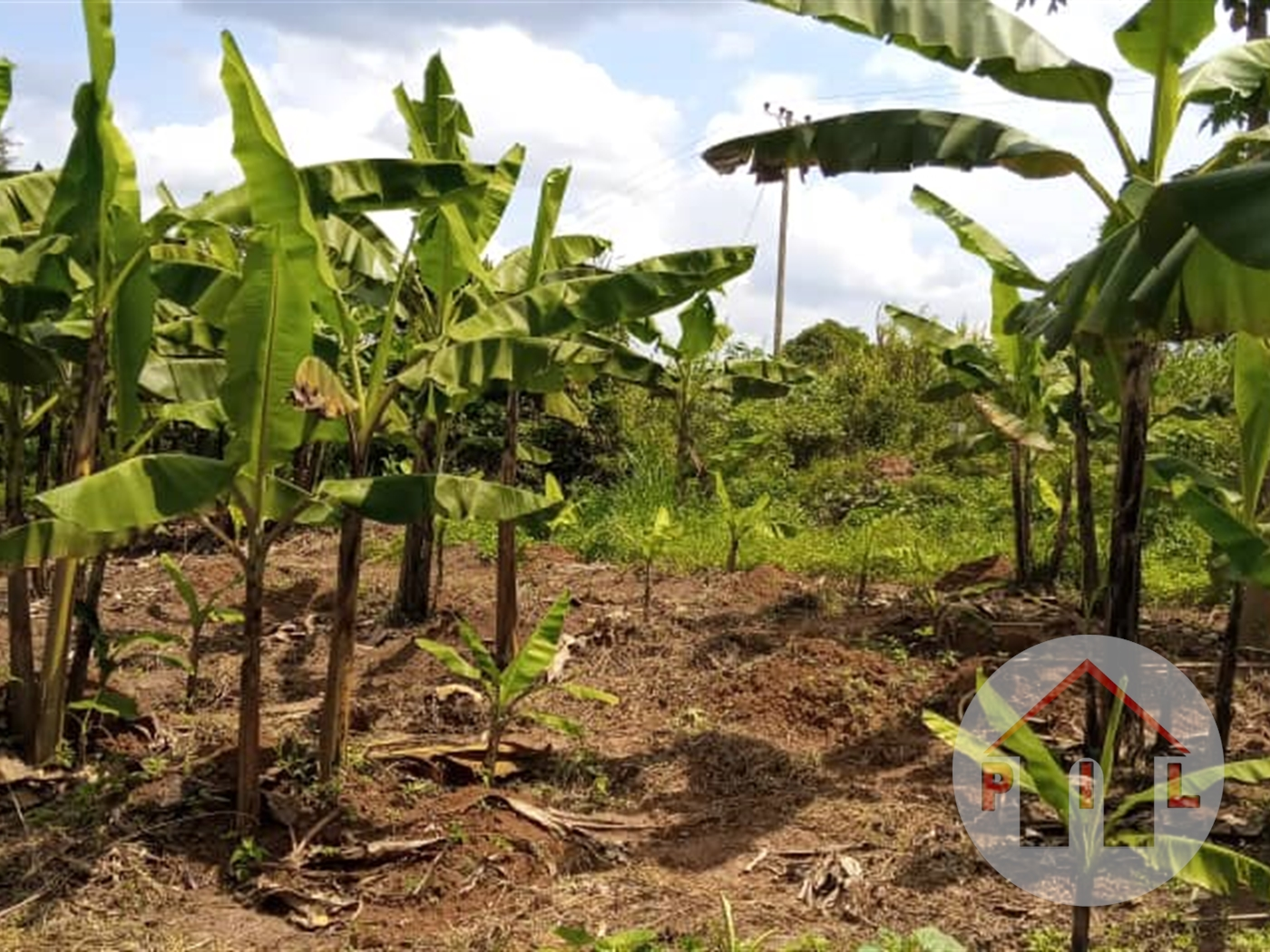 Residential Land for sale in Kabubu Wakiso