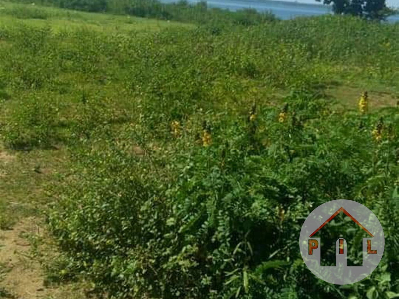 Agricultural Land for sale in Buvuma Wakiso