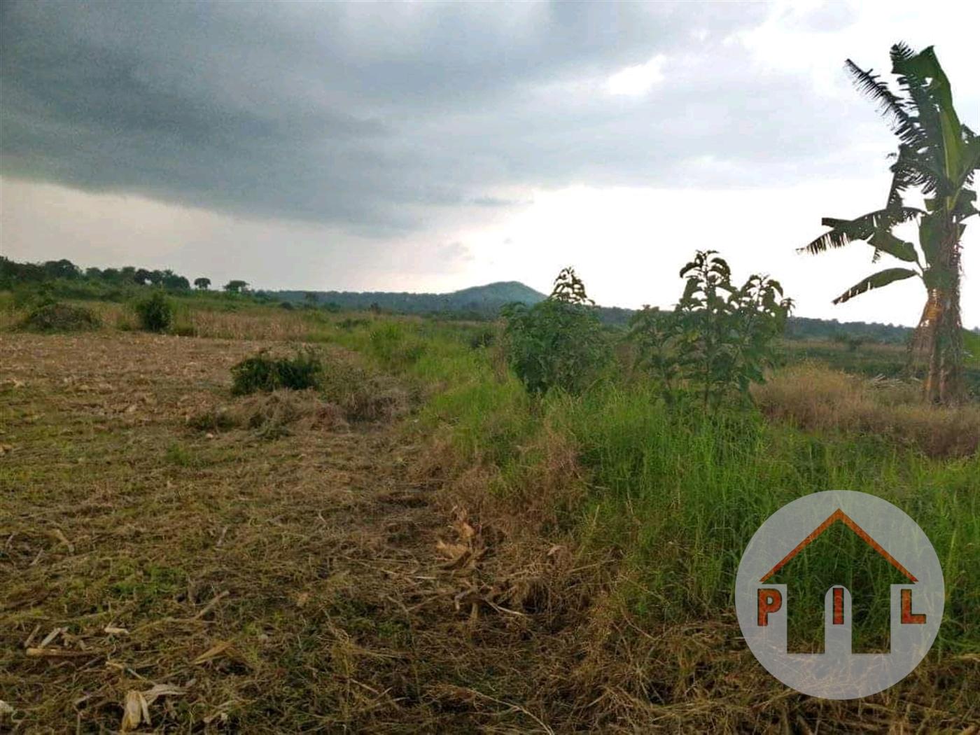 Residential Land for sale in Banda Wakiso