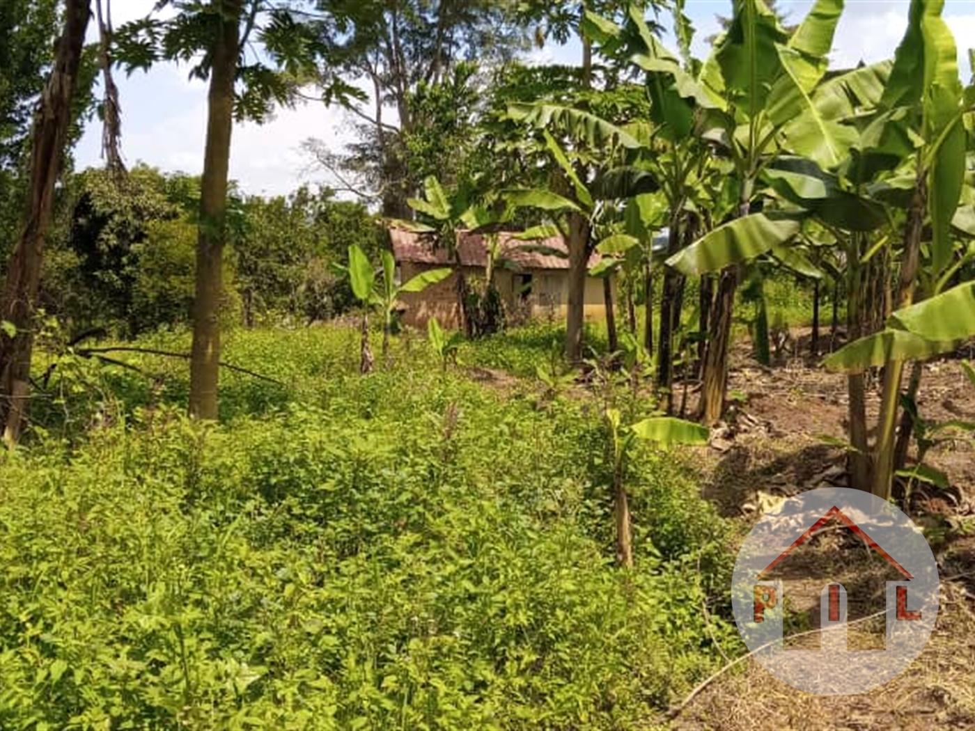 Residential Land for sale in Bujuuko Wakiso