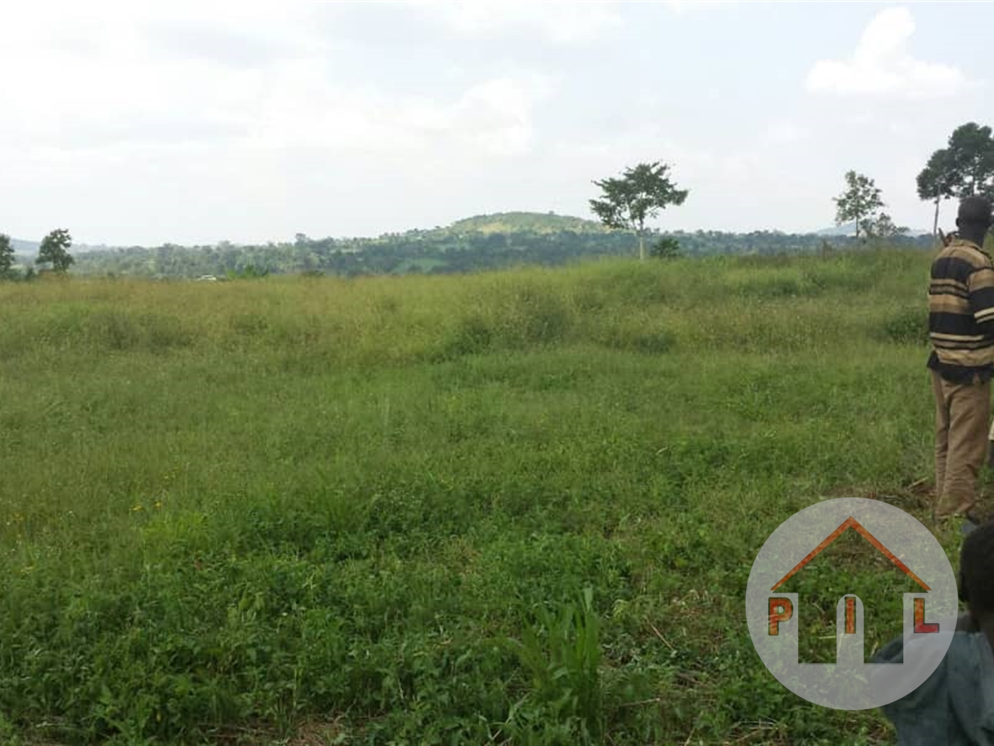 Agricultural Land for sale in Kyegegwa Kyenjojo