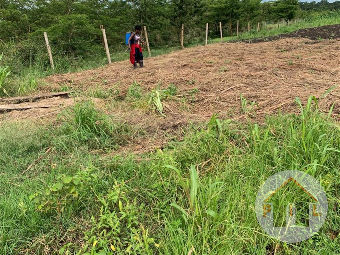 Residential Land for sale in Lutembe Wakiso