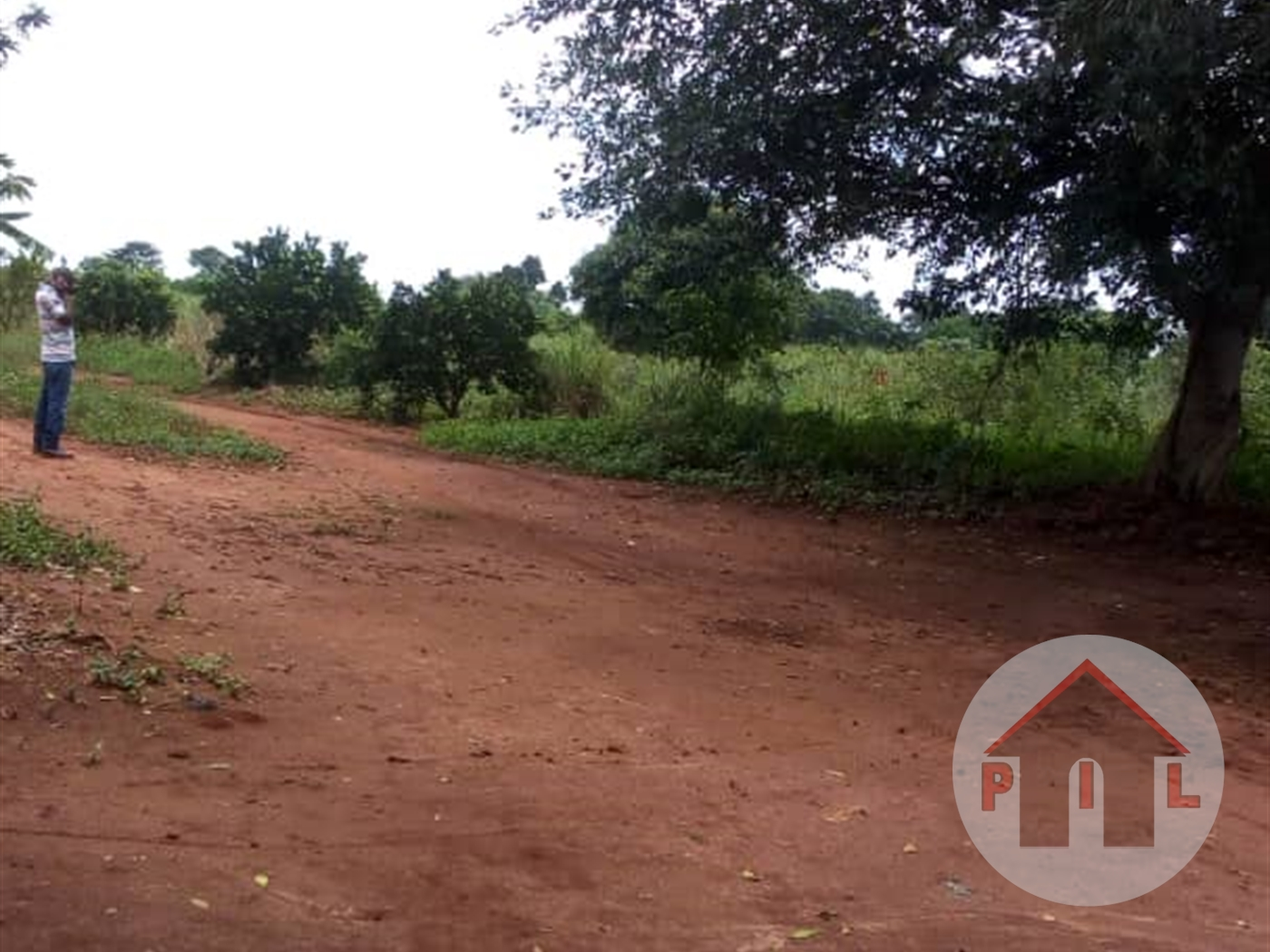 Residential Land for sale in Kasamula Mpigi