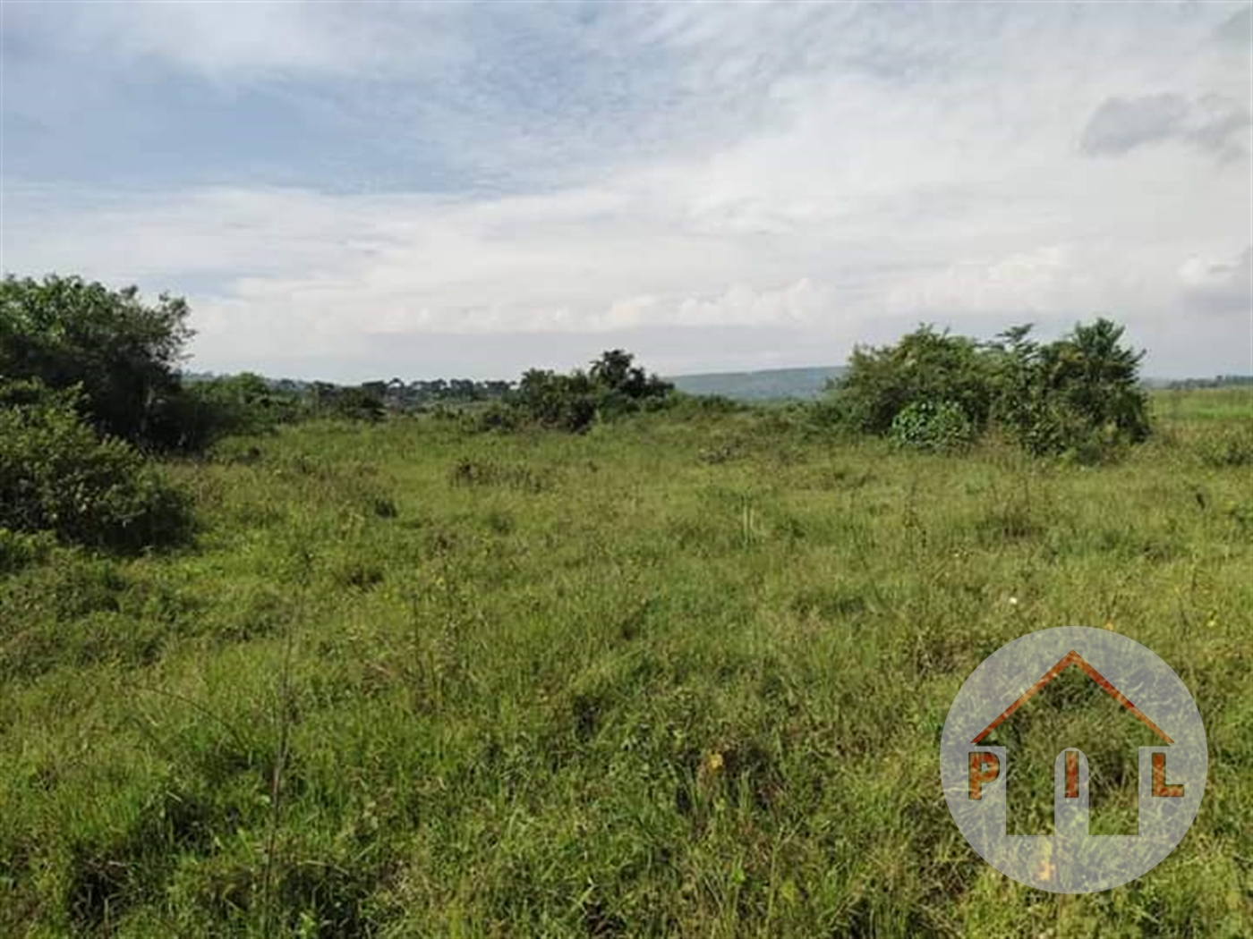 Agricultural Land for sale in Nyenga Bukwa