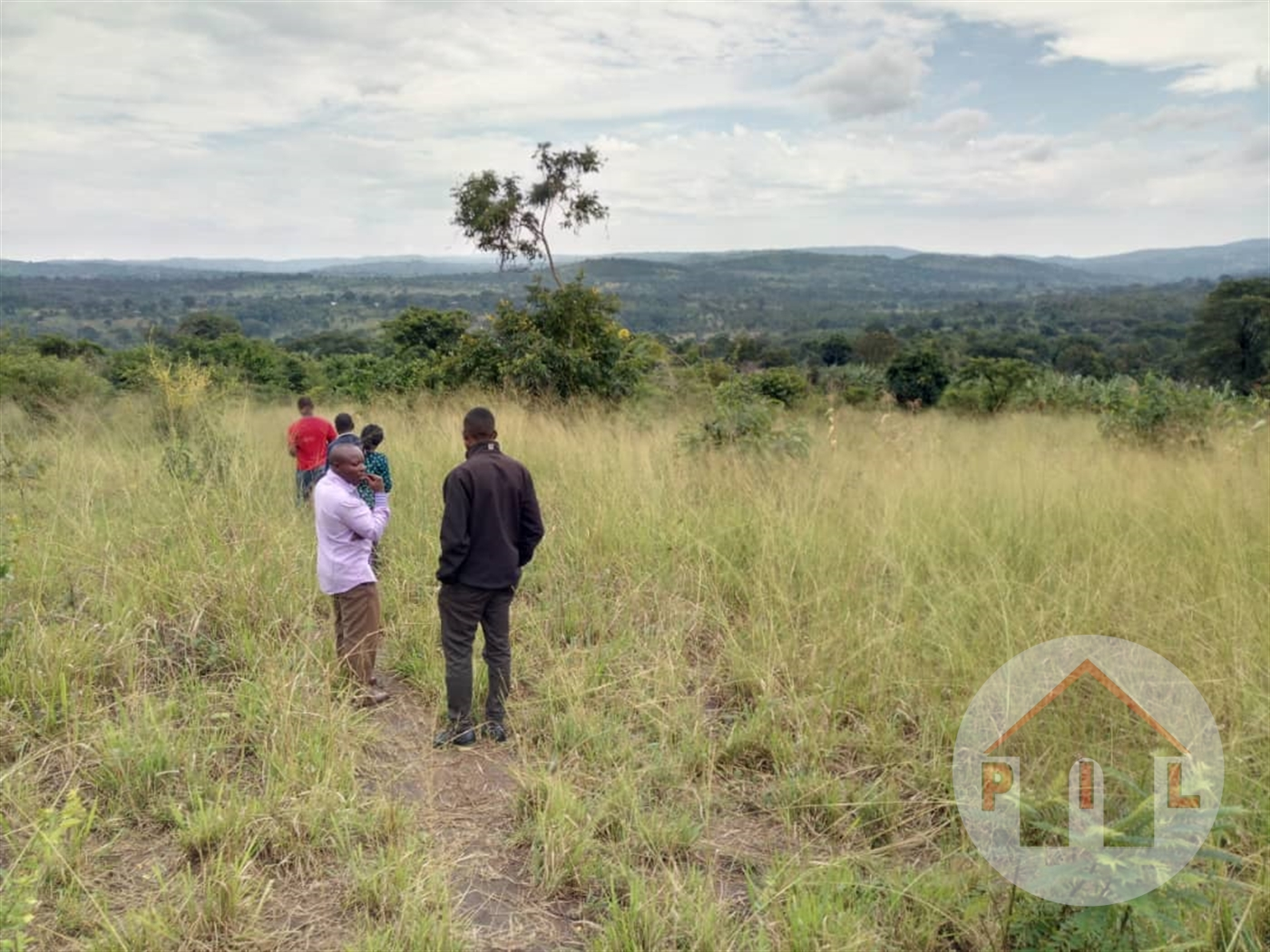 Agricultural Land for sale in Migyeera Nakasongola