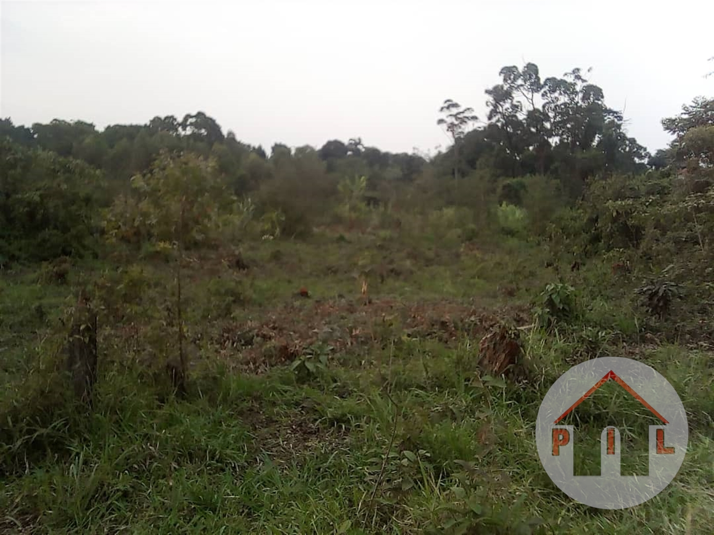 Residential Land for sale in Kasangati Wakiso