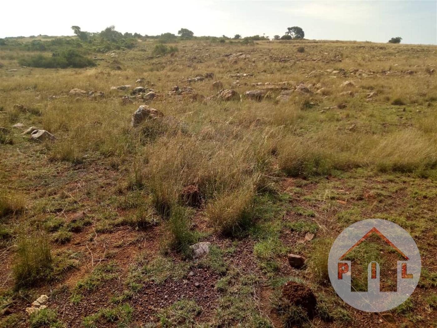 Residential Land for sale in Kitukukutwe Wakiso