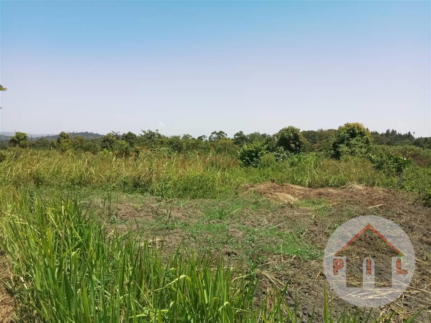 Agricultural Land for sale in Lukaya Masaka