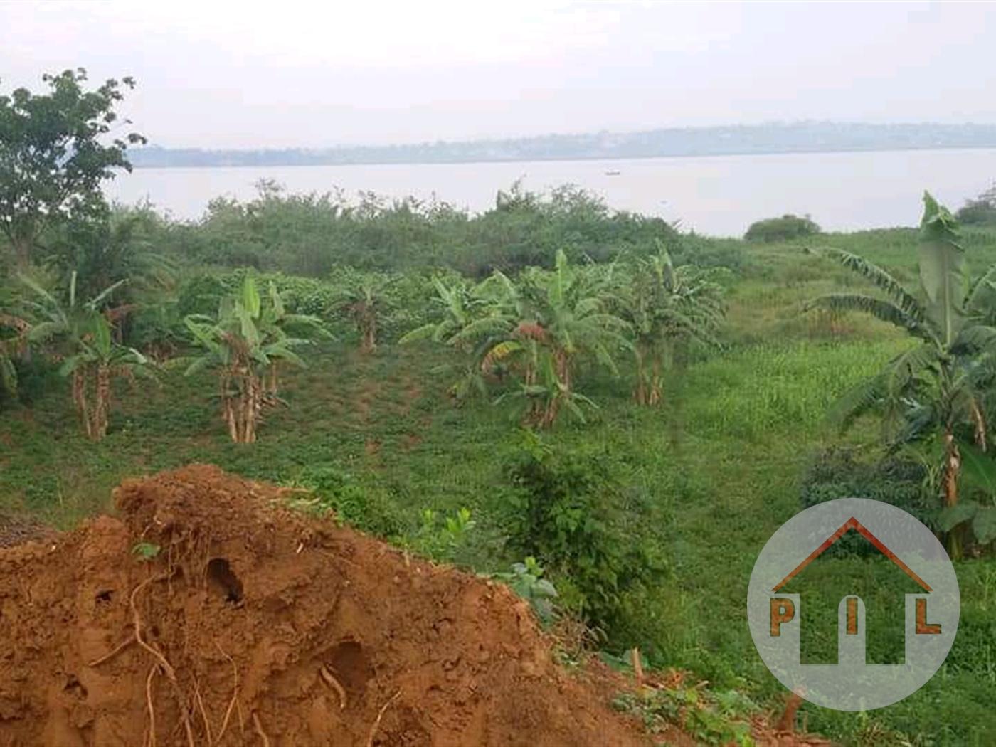 Agricultural Land for sale in Bugiri Bugiri