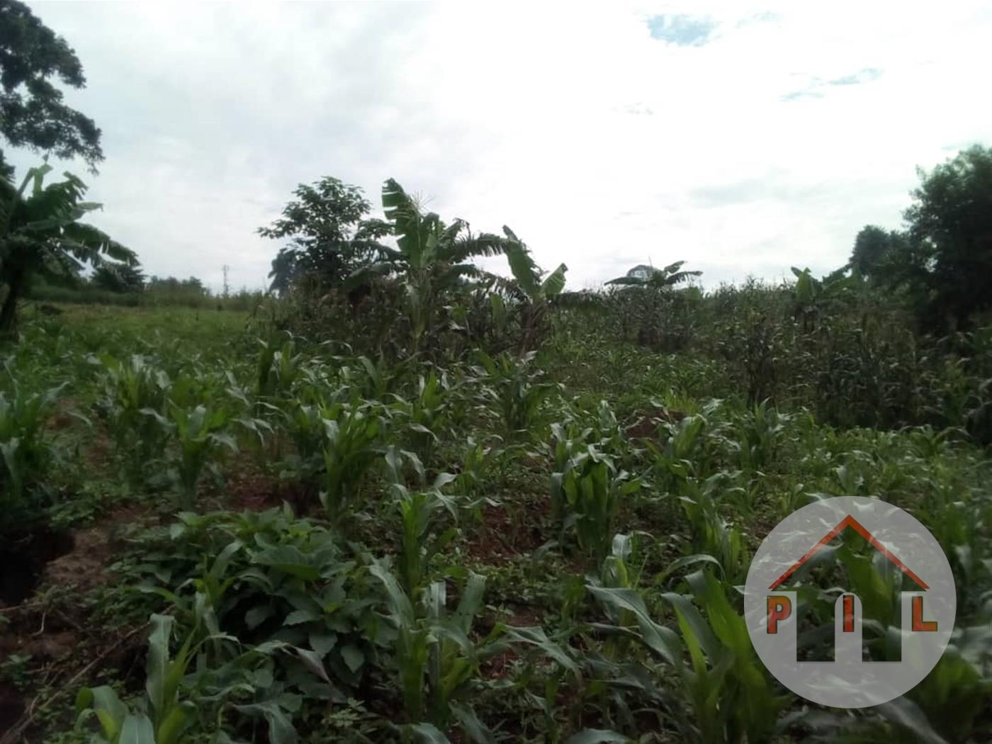 Residential Land for sale in Nangabo Wakiso