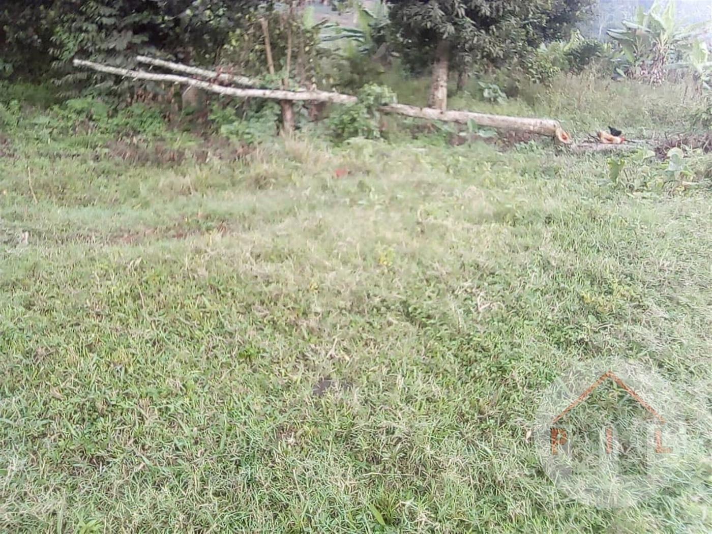 Residential Land for sale in Sanga Wakiso