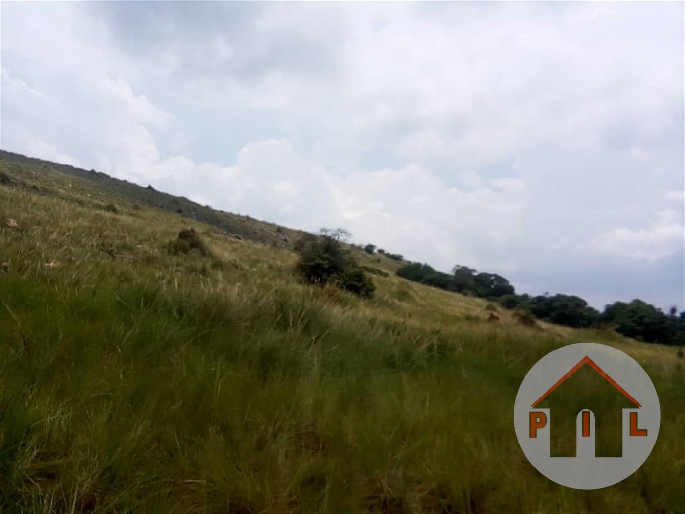 Multi Purpose Land for sale in Nkombwe Bukwa