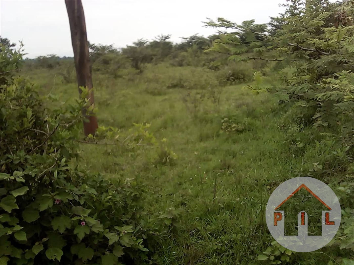 Residential Land for sale in Nsube Mukono