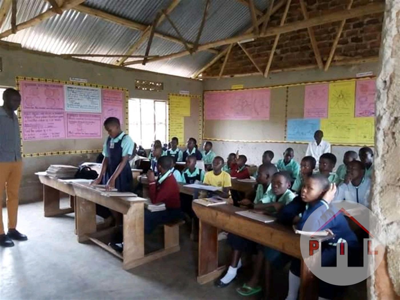 School for sale in Mityana Mityana