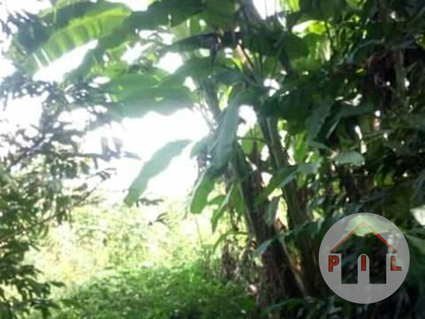 Residential Land for sale in Katugo Luwero