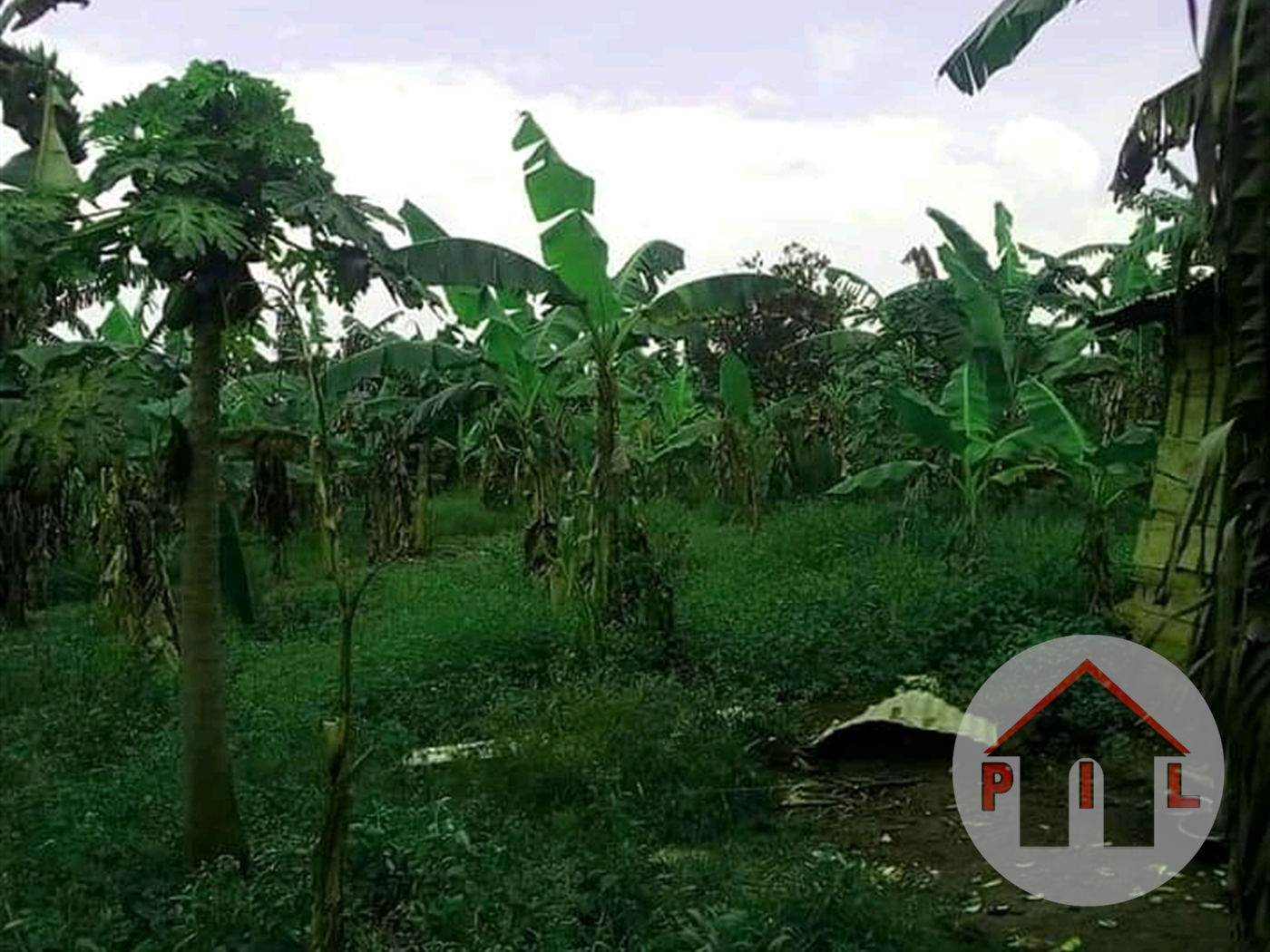 Residential Land for sale in Buddo Masaka