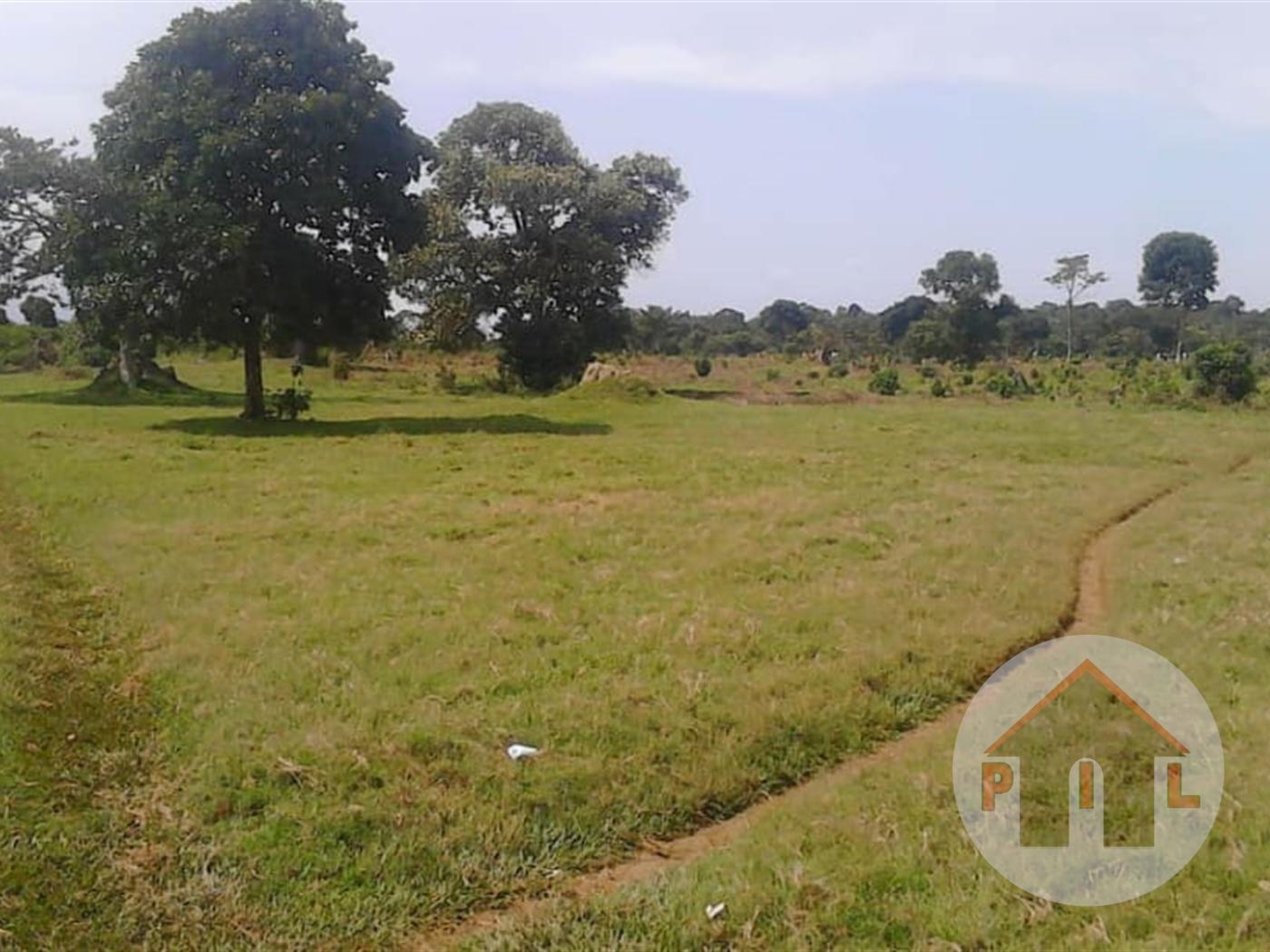 Residential Land for sale in Mukono Mukono