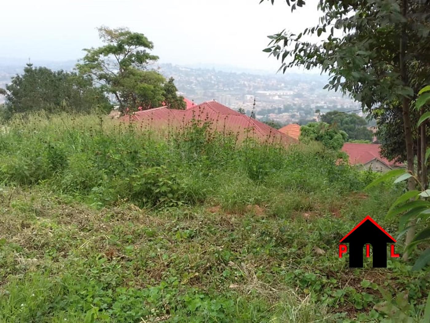 Agricultural Land for sale in Butiti Kyenjojo