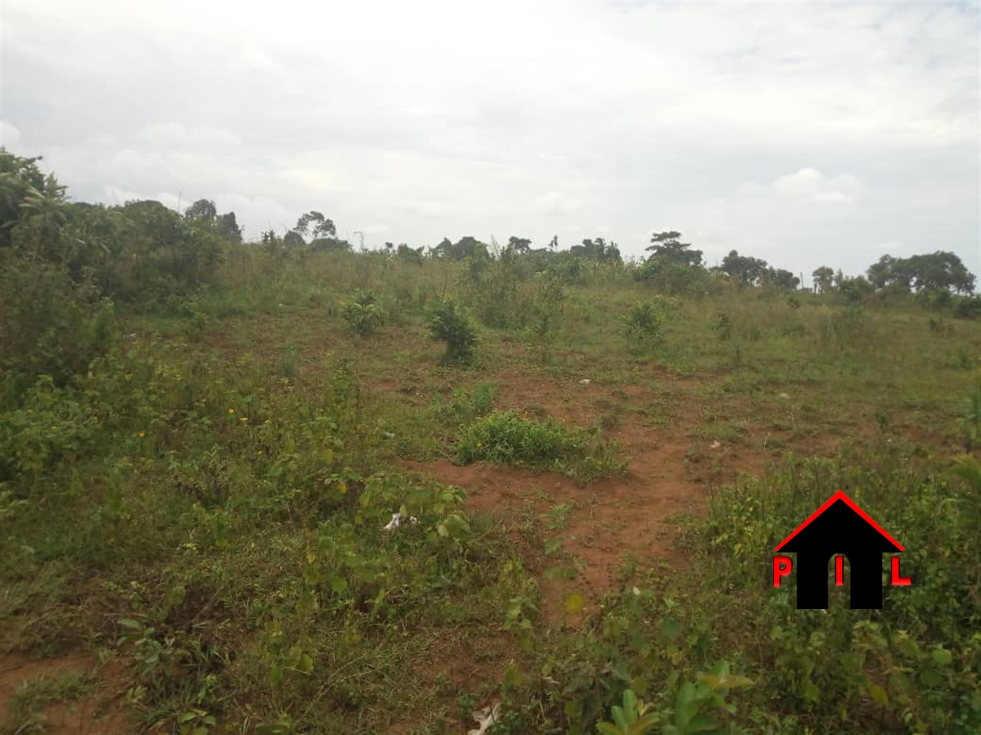 Multi Purpose Land for sale in Kiboga Kiboga
