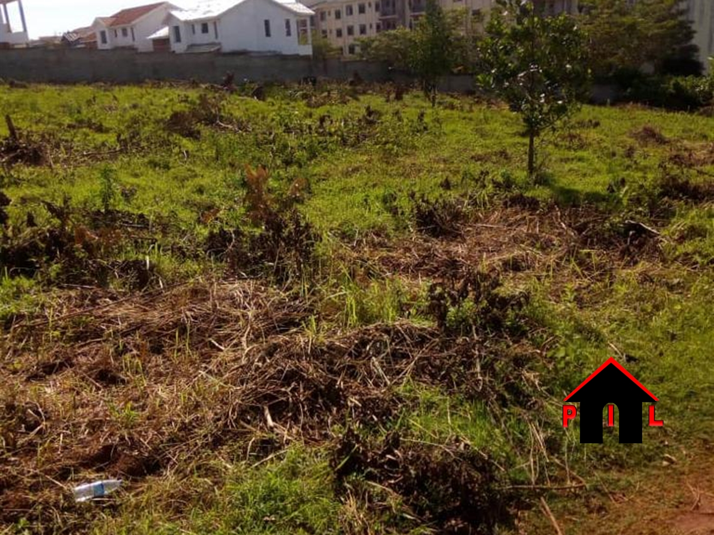 Agricultural Land for sale in Kikuube Hoima