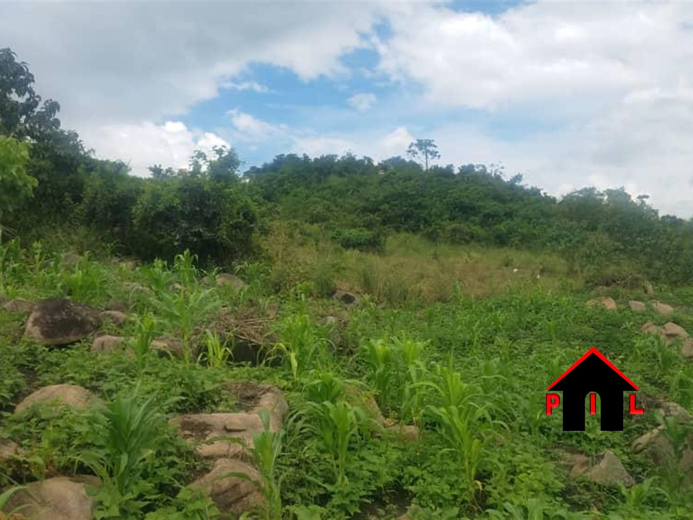 Industrial Land for sale in Rwamika Hoima