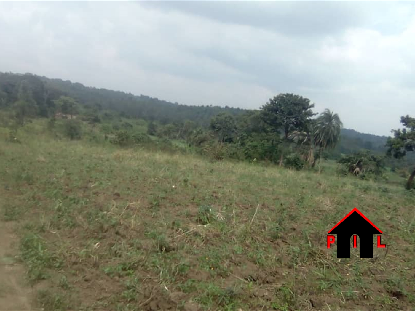 Agricultural Land for sale in Busukuma Wakiso