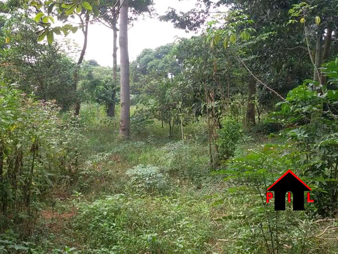 Residential Land for sale in Hoima Hoima