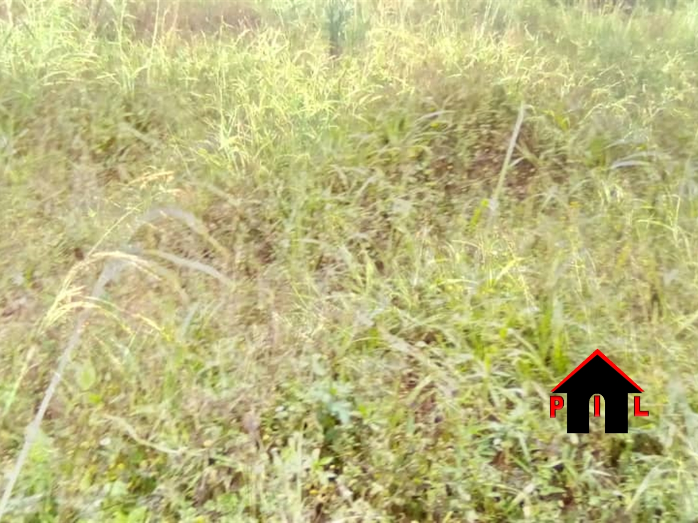 Residential Land for sale in Namuwongo Kampala