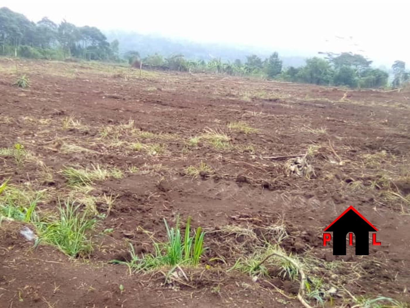 Residential Land for sale in Bukeerere Mukono
