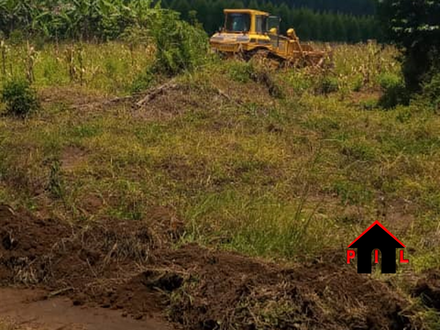 Residential Land for sale in Buujuko Mityana