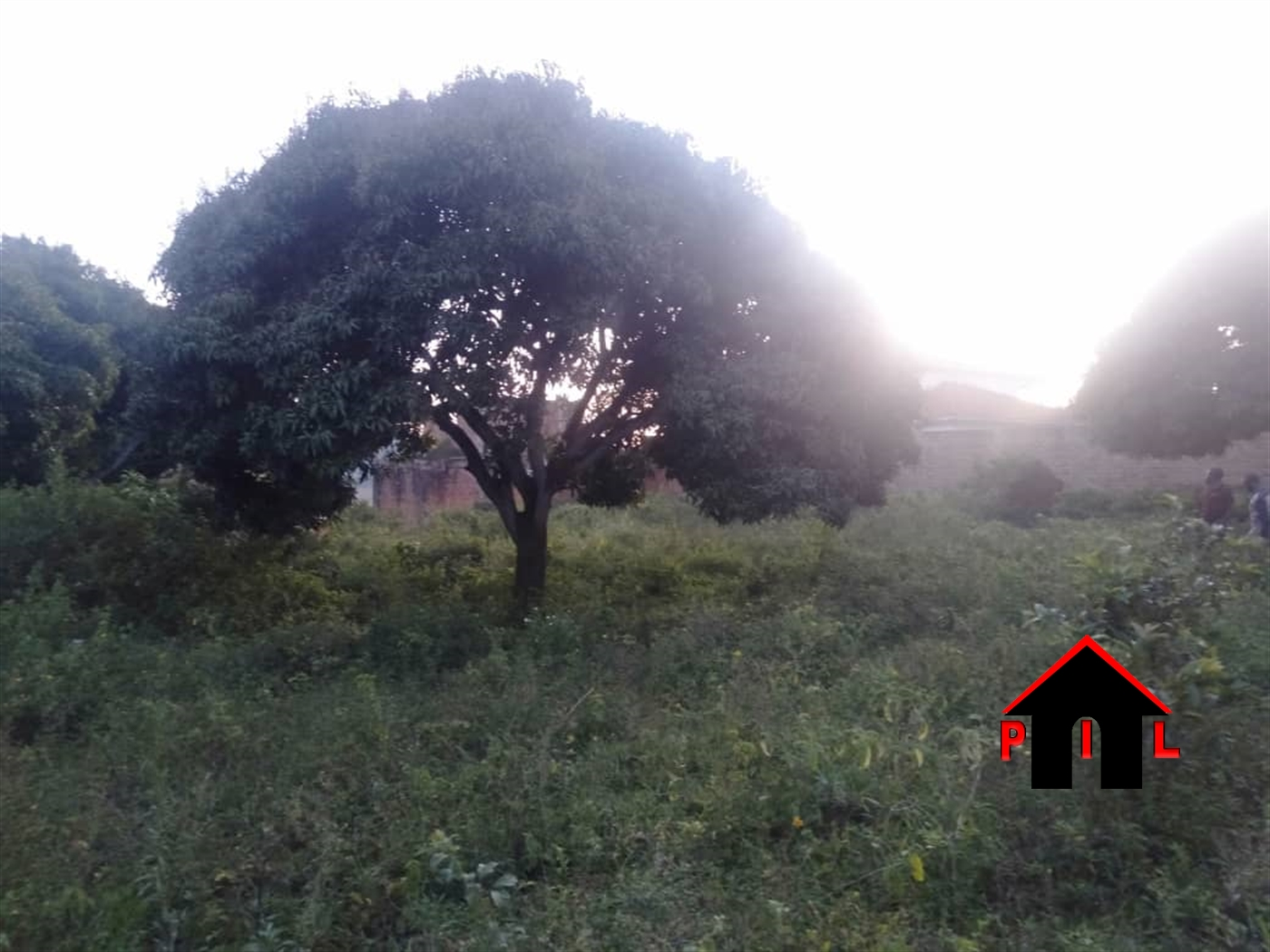 Residential Land for sale in Bweya Wakiso