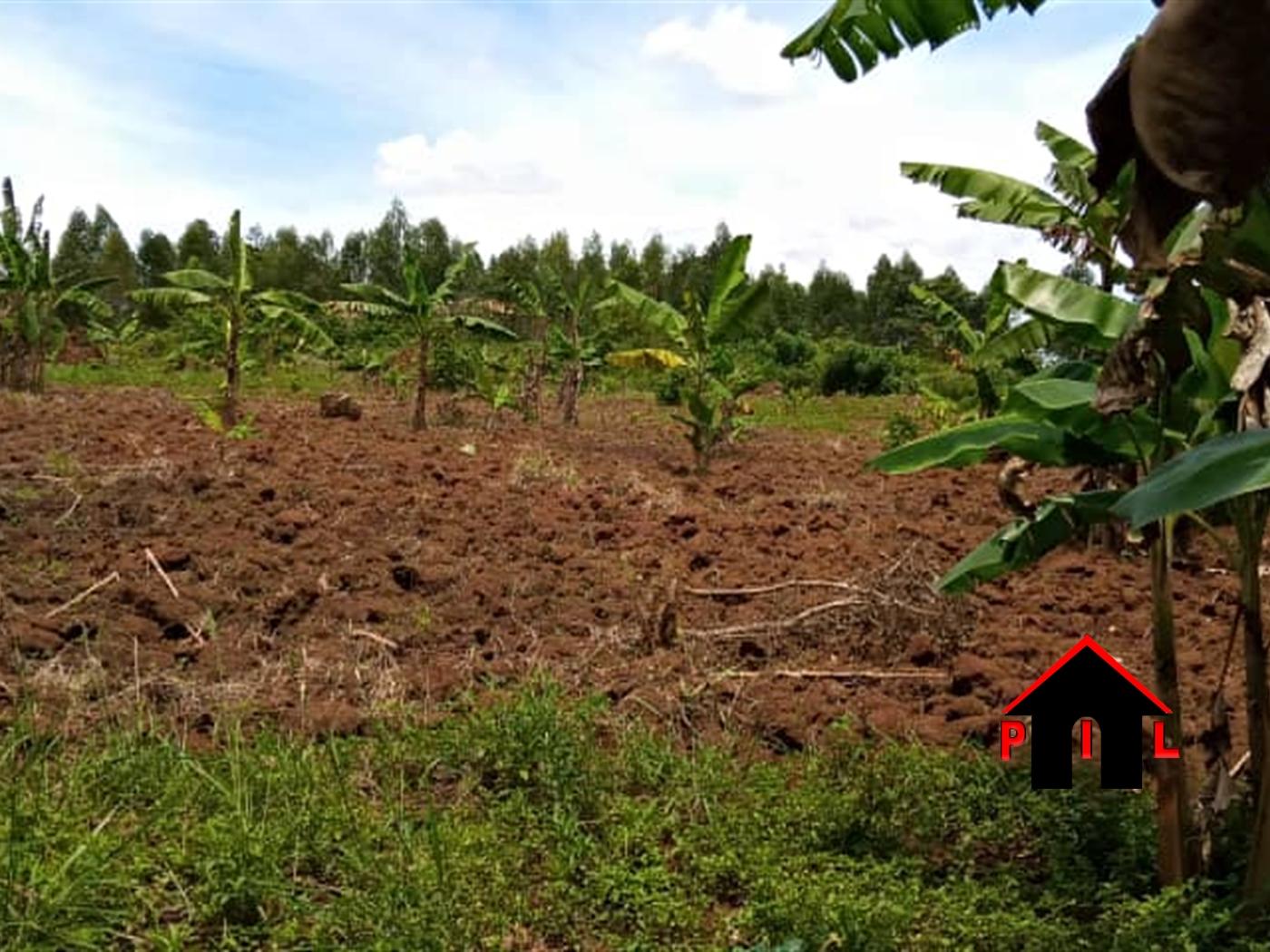 Residential Land for sale in Kawanda Wakiso